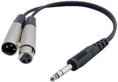 Image de 1 Ft 1/4'' Stereo Male To 1 XLR Male And XLR Female Y-Cable