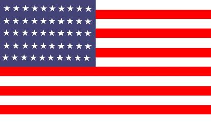 "Picture of ""AMERICAN FLAG"""