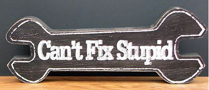 "Picture of ""Can't Fix Stupid"" Tabletop Wood Sign"